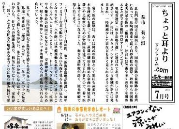 H29年7月号ニュースレター