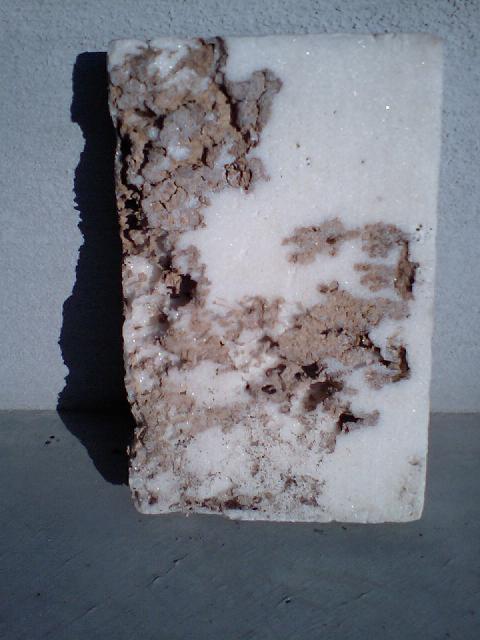 シロアリ被害の断熱材